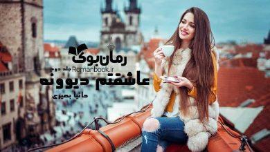 Photo of دانلود رمان عاشقتم دیوونه جلد دوم