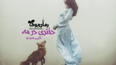 Photo of دانلود رمان دختری در مه