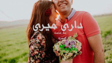 Photo of دانلود رمان داری میری