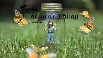 Photo of دانلود رمان پروانگی یک پروانه