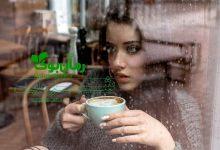 Photo of دانلود رمان شیرین