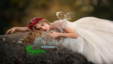 Photo of دانلود رمان شوکا عروس جنگل