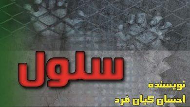 Photo of رمان سلول احسان کیان فرد