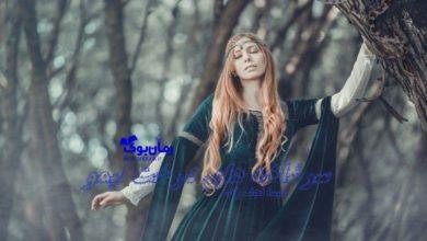 تصویر از رمان سرشاخه های درخت لیمو