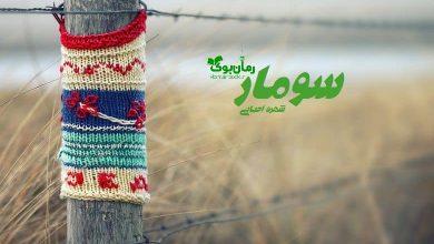 Photo of رمان سومار شهره احیایی