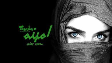 تصویر از رمان امینه مسعود بهنود
