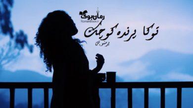 تصویر از رمان توکا پرنده کوچک پونه سعیدی