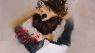 تصویر از رمان یادت بیار منو اعظم فهیمی