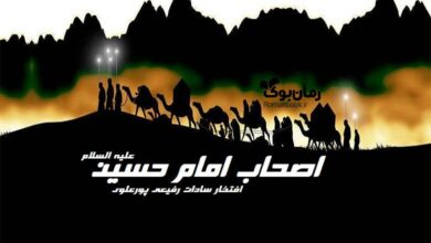 تصویر از کتاب اصحاب امام حسین علیه السلام