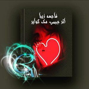 رمان فاجعه زیبا از جیمی مک گوایر